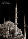 Blue Mosque in Black and White